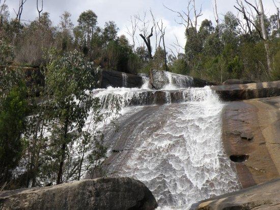 murrindindi-scenic-reserve.jpg